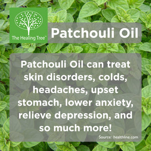 Benefits of Patchouli Oil | The Healing Tree