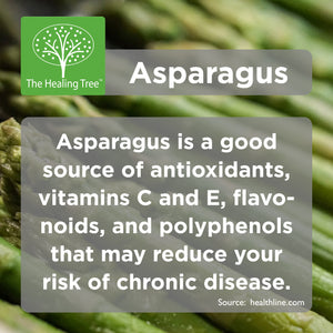 Benefits of Asparagus | The Healing Tree
