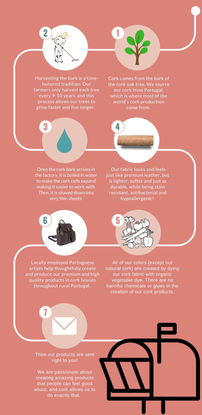 Eve Cork Infographic Process Vegan EcoFriendly Fashion Purses