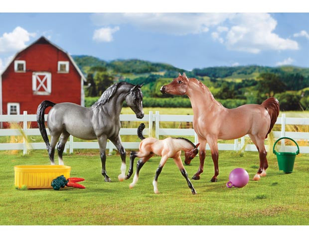 Breyer A Champion is Born Set