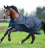 Horseware Amigo Bravo 12 (100g Lite) Turnout Blanket - North Shore Saddlery
