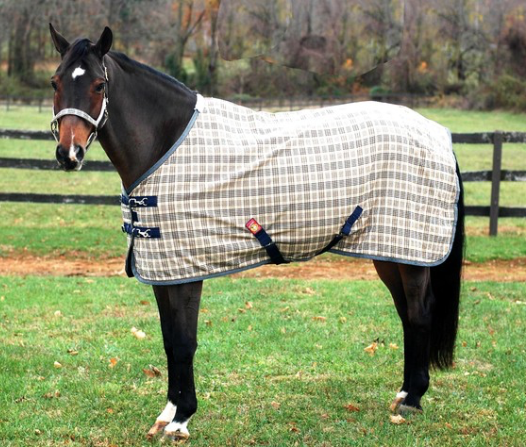 Baker Deluxe Stable Sheet - North Shore Saddlery
