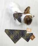 Barbour Tartan Dog Bandana - North Shore Saddlery