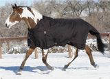 Turtleneck Heavy Weight 300 gram fill Turnout Blanket - North Shore Saddlery