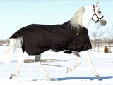Turtleneck Heavy Winter 400gram-fill Turnout Blanket - North Shore Saddlery