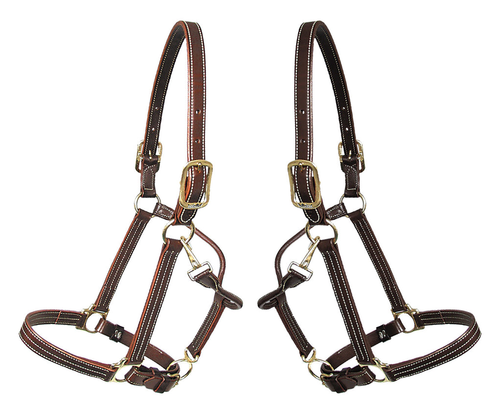 Walsh Kentucky Leather Halter