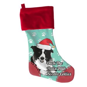 Border Collie-Stockings-Spyder Deals