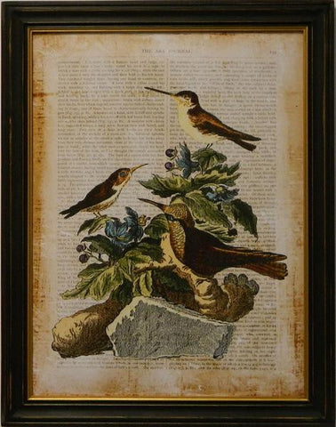 Antiquarian Bird IV Art Print