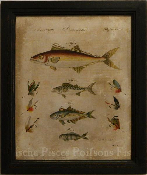 Pisces II Art Print - The National Memo