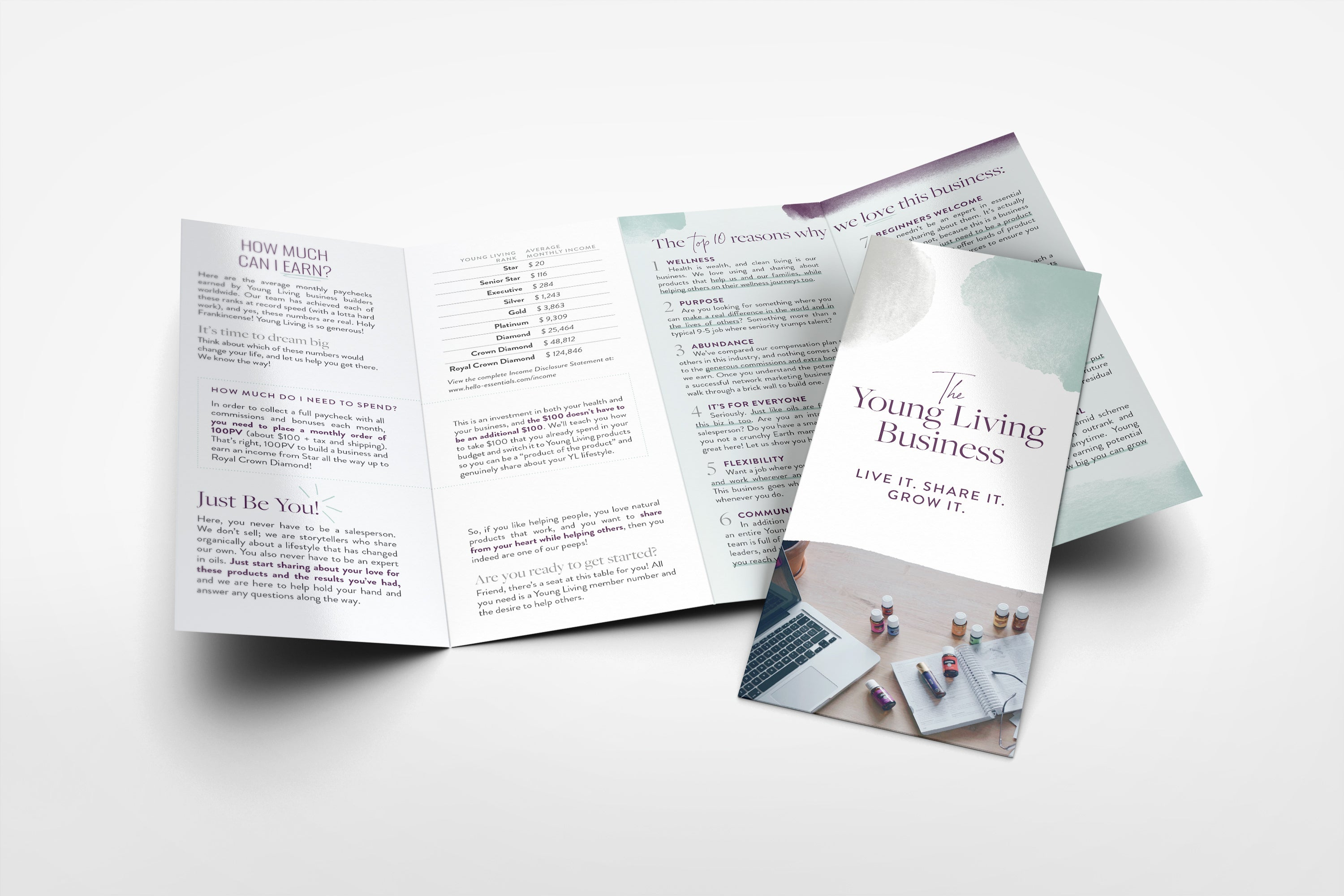 Brochure - The Young Living Business: Pack of 50
