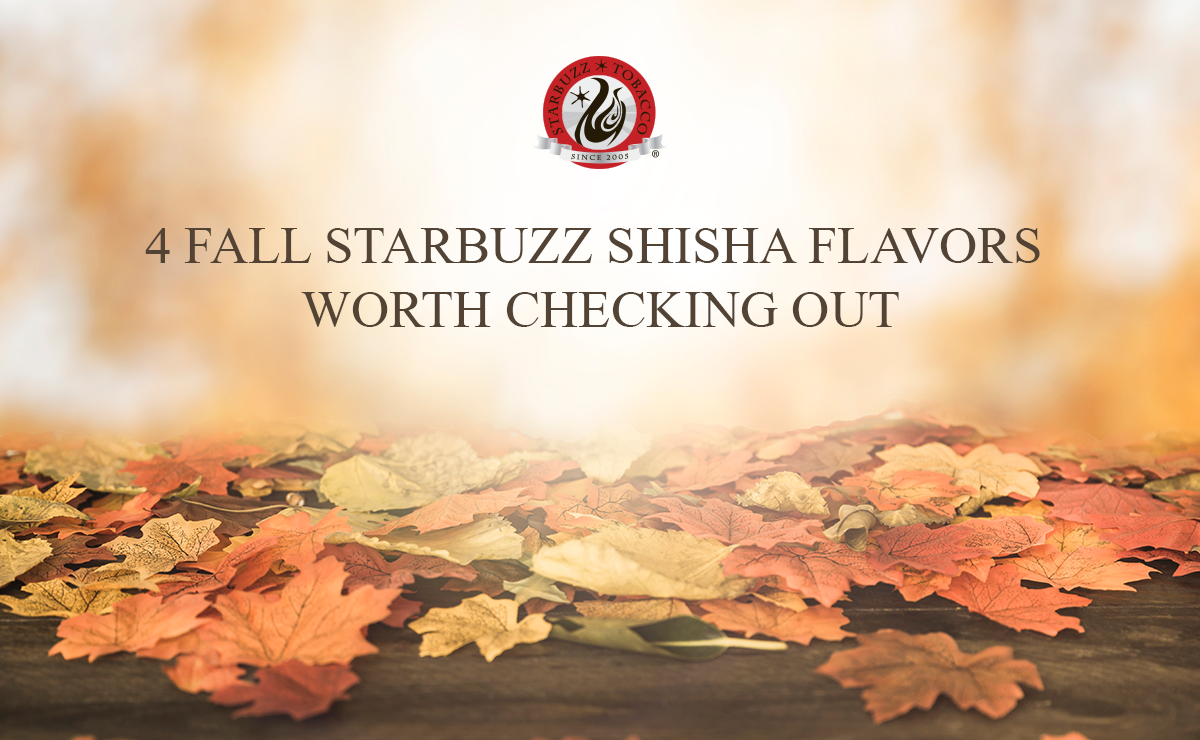 4 Fall Starbuzz Shisha Flavors Worth Checking Out