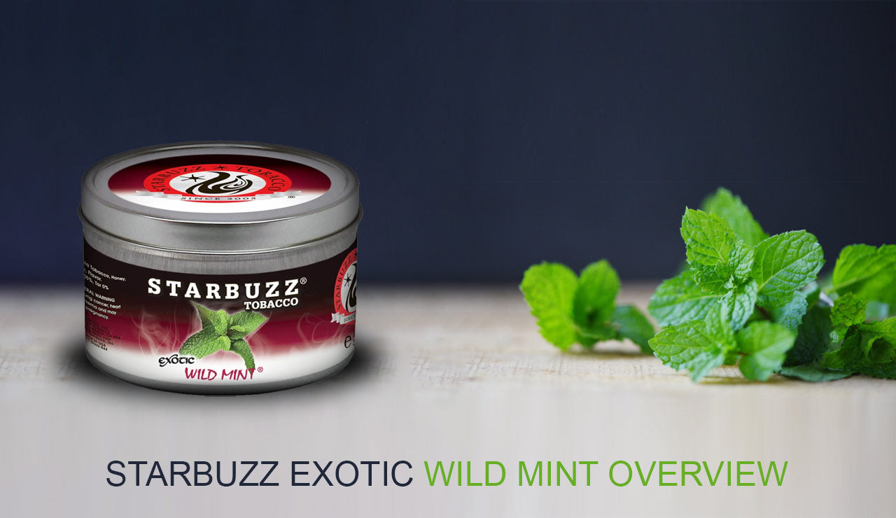 Starbuzz Exotic Wild Mint Overview