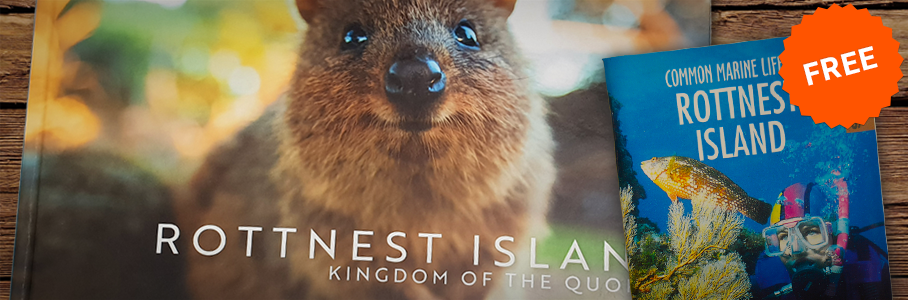 Kingdom of the Quokka Offer