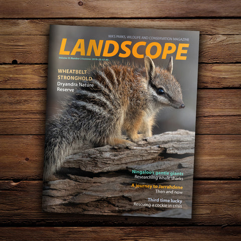 LANDSCOPE Vol 35 No 2 Summer 2019-20