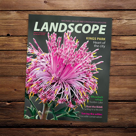 LANDSCOPE Vol 33/No 1 Spring 2017