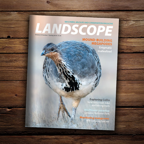 LANDSCOPE Vol 35/No 1 Spring 2019