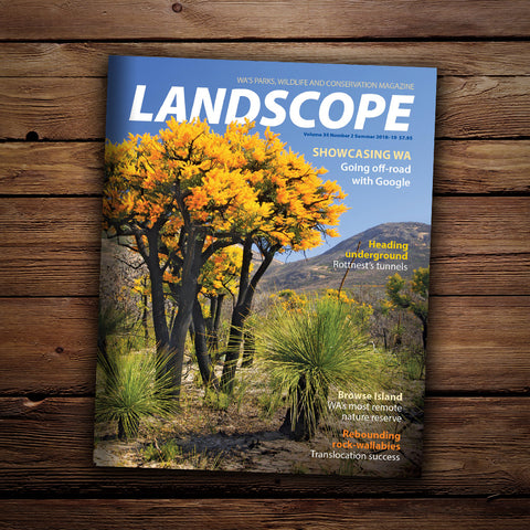 LANDSCOPE Vol 34/No 2 Summer 2018- 2019