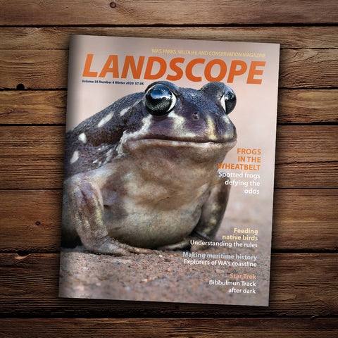 LANDSCOPE Volume 35 Number 4 Winter 2020 cover