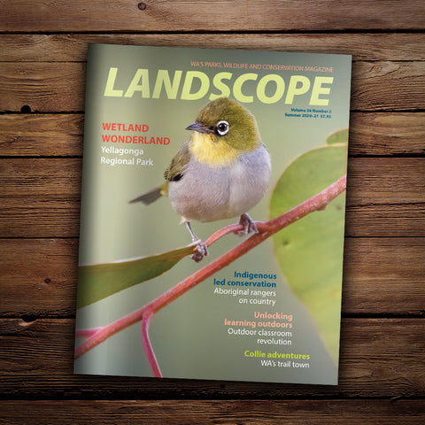 LANDSCOPE Vol 36/No 2 Summer 20-21