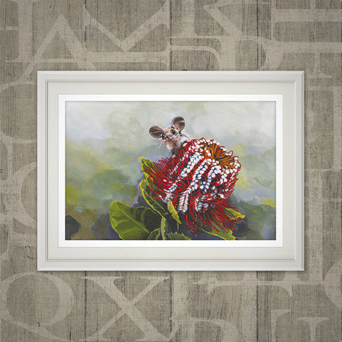 Scarlet banksia and pygmy possum print