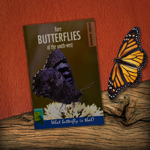 Rare Butterflies of the South West