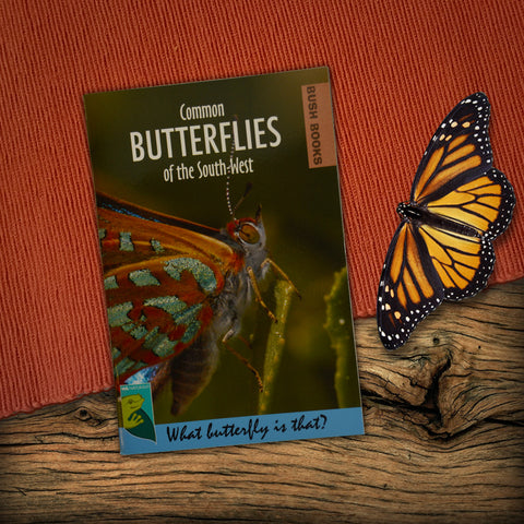 Butterflies of the South-West