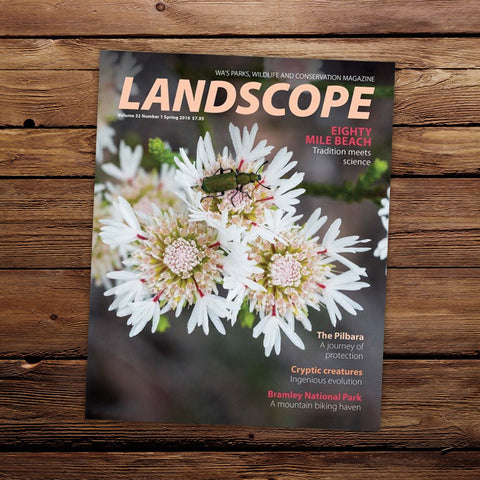 LANDSCOPE Vol 32/No 1 Spring 2016