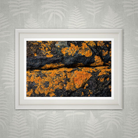 Lichen-stained rocks print
