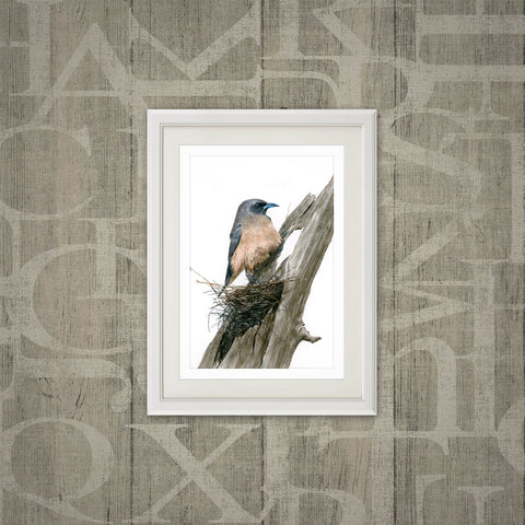 Masked wood swallow print