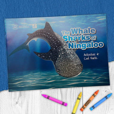 The Whale Sharks of Ningaloo- Activity book