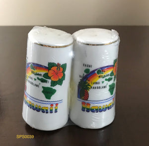 Vintage Ceramic Porcelain Novelty Hawaii Salt Pepper Shakers - 1990's