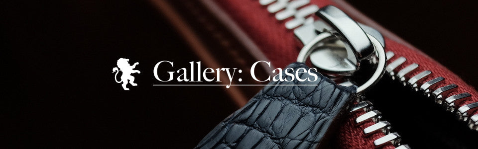 Gallery of Cases