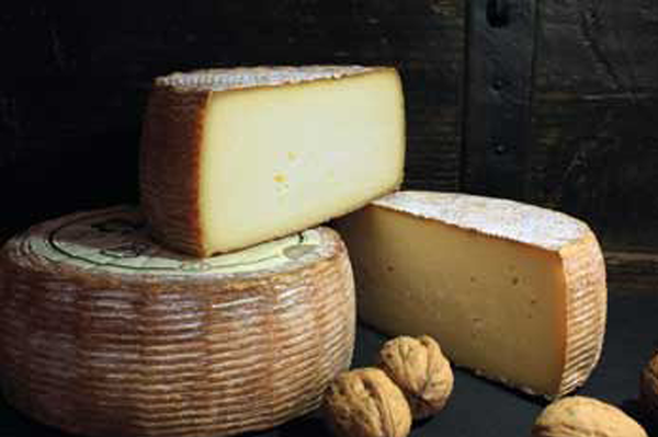 French cheese Tomme des Croquants Walnut Liqueur full wheel and two half wheels