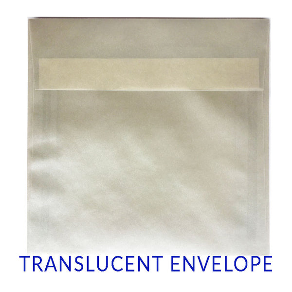 Translucent Pearl (SQUARE) - clearance