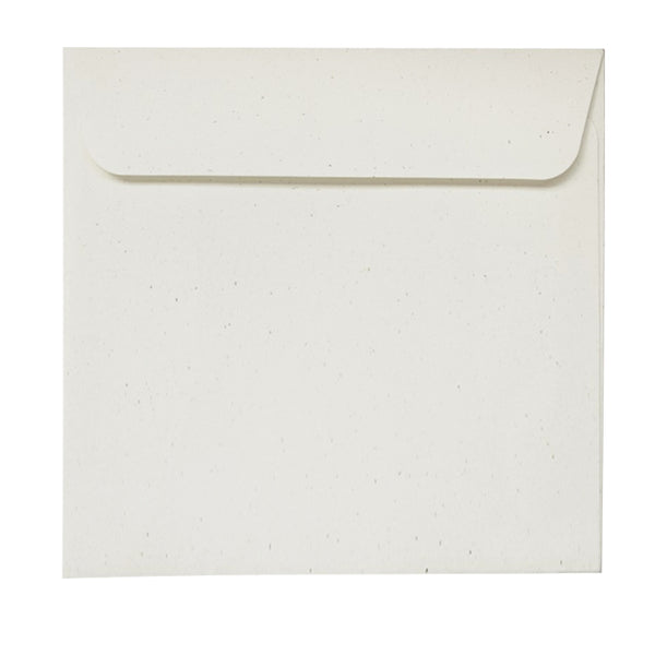 Birchwood - 160x160mm (SQUARE) - Recycled Off-White