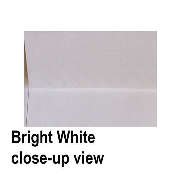 BRILLANT WHITE 110x220mm (DL) Textured