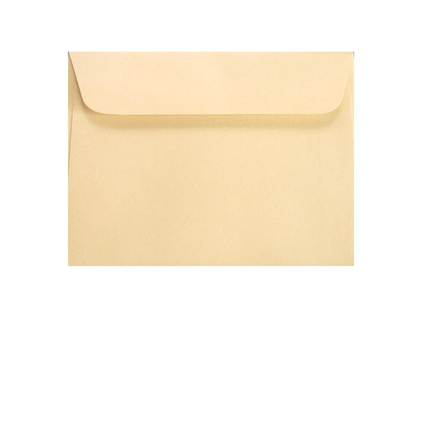 small ivory cream coloured wallet envelope