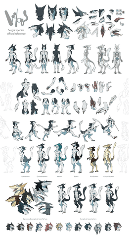 Sergal Anatomy Reference Sheet - Limited Physical Edition
