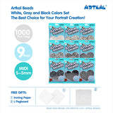 SB1000-GRAY Midi S-5mm  Artkal beads 1000 Count Pack