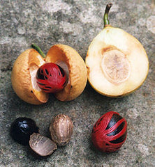 nutmeg tree fruit mace - Annindriya Perfume Lounge
