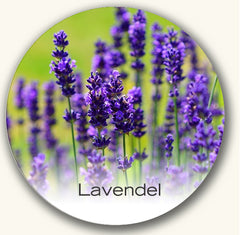 lavendel in parfums