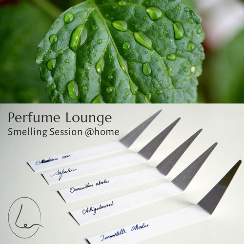 14 januari Smelling Session @home - Parfums met Patchouli (geweest)