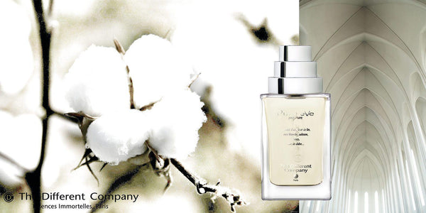 Pure Eve-eau de parfum-The Different Company-Perfume Lounge
