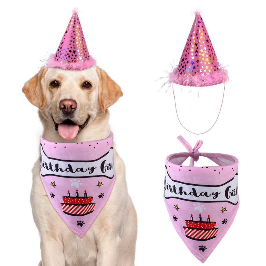 Adorable Birthday Boy or Girl Dog Costume