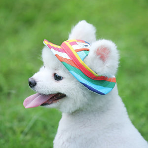 Cutest Hat Ever for Your Goodest Dog