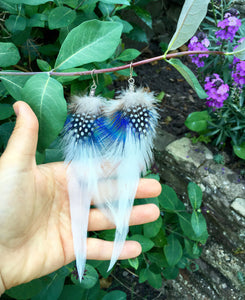 Spotty Feather Earrings