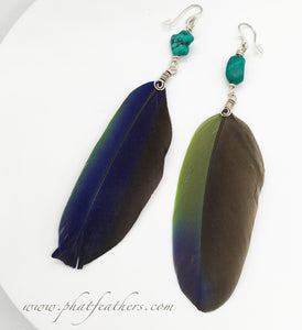 Turquoise Single Feather Earrings