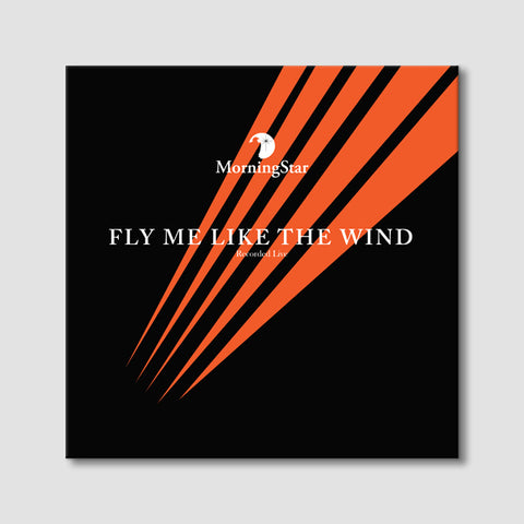Fly Me Like the Wind