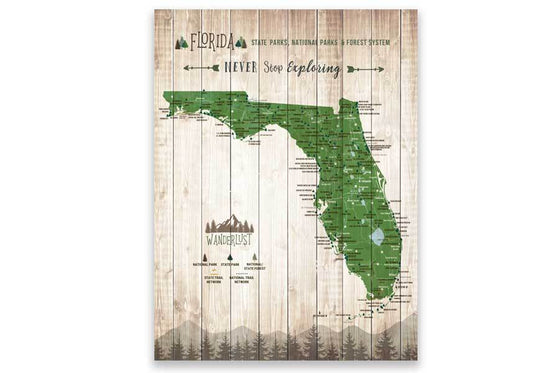 Map of Florida State Parks, Canvas Push Pin Board Map World Vibe Studio 12x16 Green