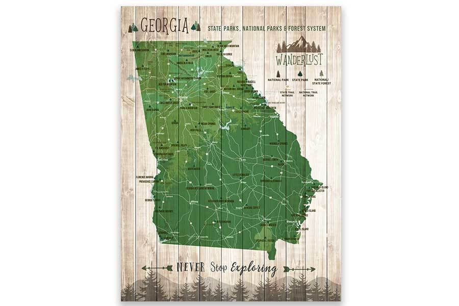 Georgia State, State Park Map, Canvas, Ready to Hang Map World Vibe Studio 12X16 Green